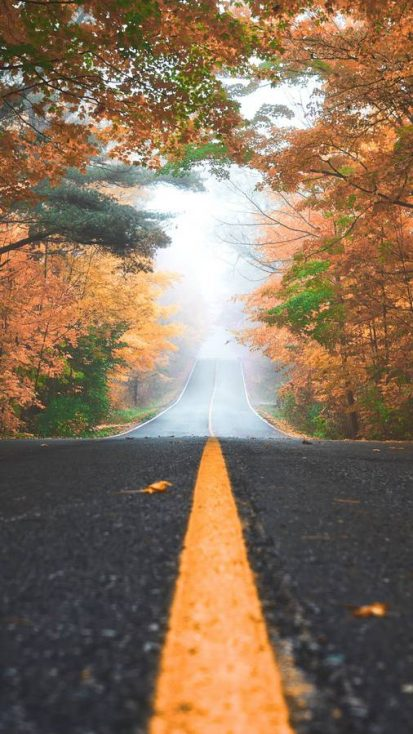Autumn Road King City Canada iPhone Wallpaper