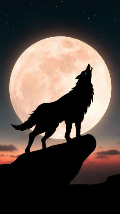 Moon Wolf iPhone Wallpaper