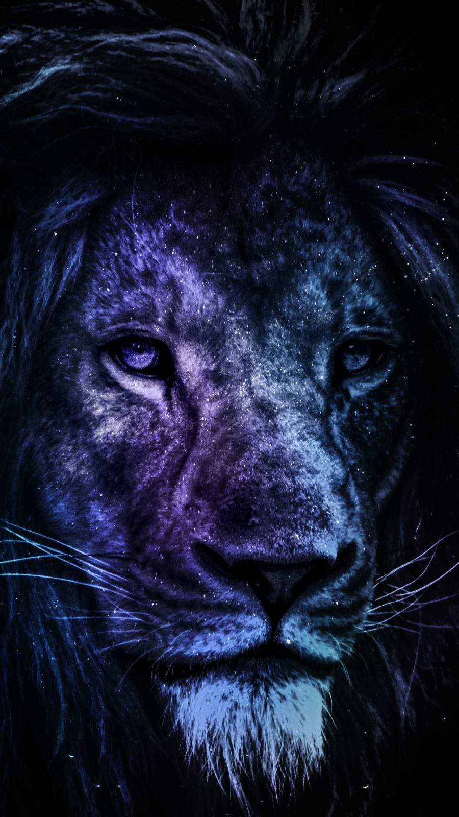 The Predator iPhone Wallpaper