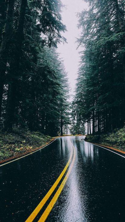 Rain Road iPhone Wallpaper